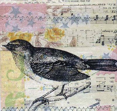 Colorbird1_2